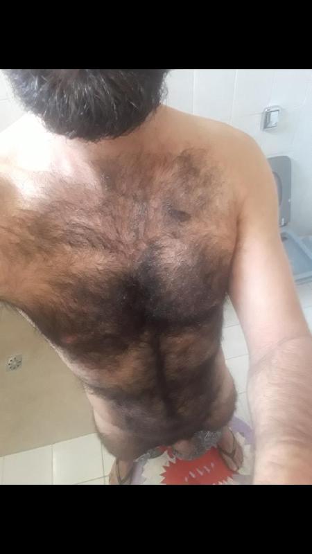 @hairybrazil1